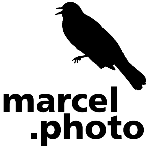 marcel.photo